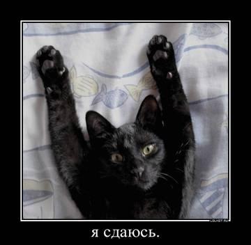 http://s3.uploads.ru/t/mGiHn.jpg