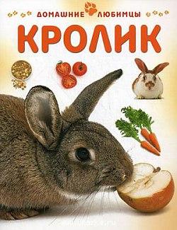http://s3.uploads.ru/t/mvYuK.jpg