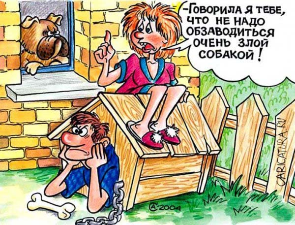 http://s3.uploads.ru/t/nIw8R.jpg
