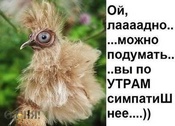 http://s3.uploads.ru/t/nJBW0.jpg