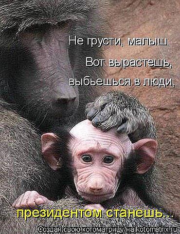 http://s3.uploads.ru/t/nXcgE.jpg