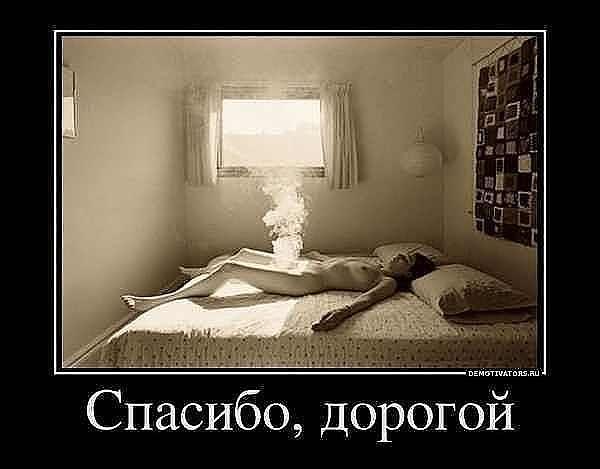 http://s3.uploads.ru/t/nhOdC.jpg