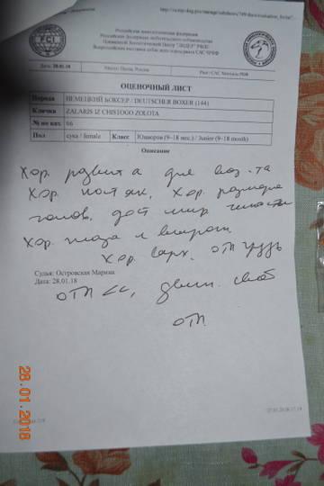 http://s3.uploads.ru/t/oCw07.jpg