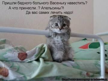 http://s3.uploads.ru/t/oLZcS.jpg