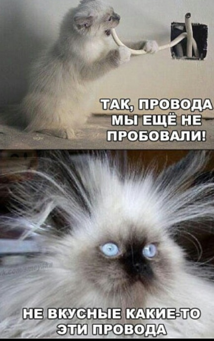 http://s3.uploads.ru/t/oPg41.jpg