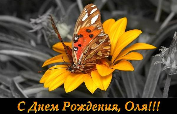 http://s3.uploads.ru/t/oW8ng.jpg