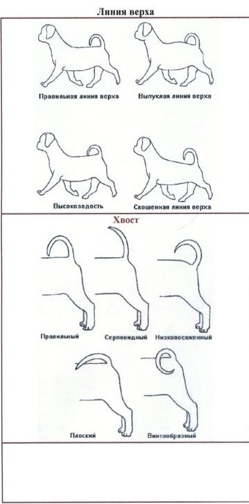 http://s3.uploads.ru/t/ocTCh.jpg