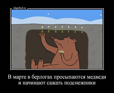 http://s3.uploads.ru/t/odSLO.jpg