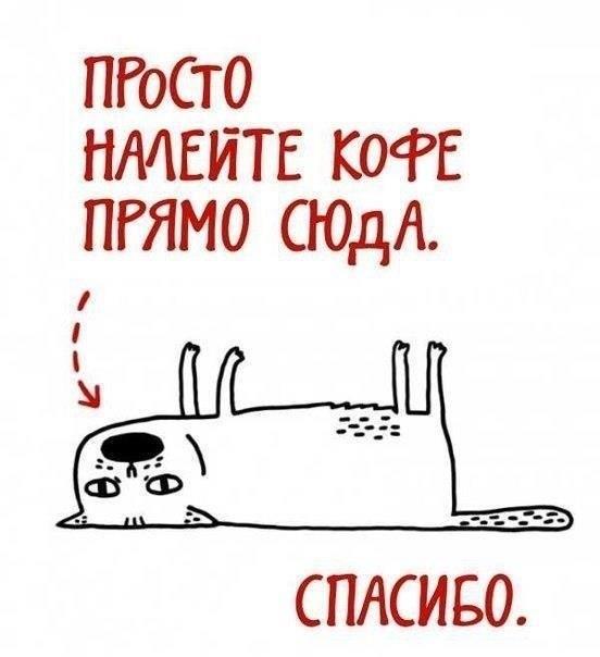 http://s3.uploads.ru/t/ozCn4.jpg