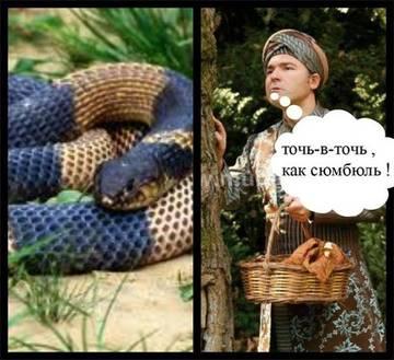 http://s3.uploads.ru/t/pyUYf.jpg