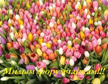 http://s3.uploads.ru/t/q5sLK.jpg