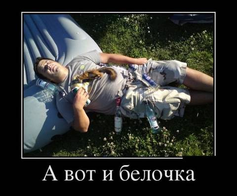 http://s3.uploads.ru/t/qKx6N.jpg