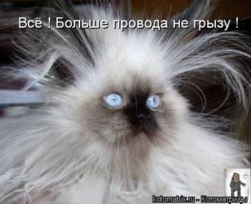 http://s3.uploads.ru/t/qgf3P.jpg