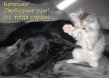 http://s3.uploads.ru/t/r0akD.jpg