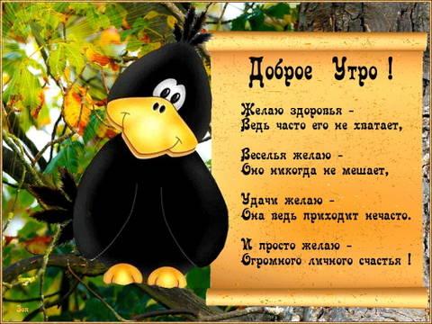 http://s3.uploads.ru/t/rJFU3.jpg