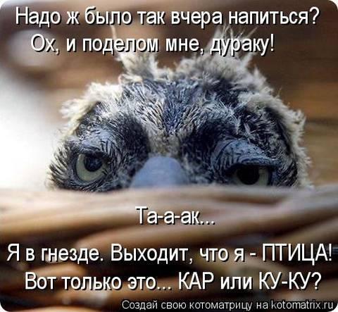 http://s3.uploads.ru/t/rdoaQ.jpg