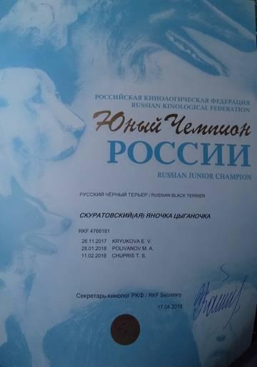 http://s3.uploads.ru/t/sEC3X.jpg