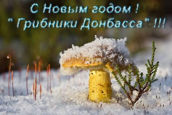 http://s3.uploads.ru/t/skn84.jpg