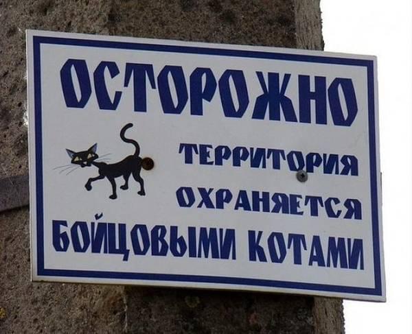 http://s3.uploads.ru/t/svMCe.jpg