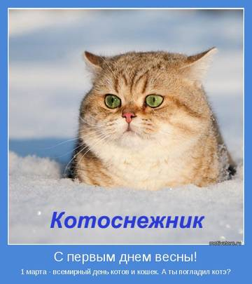 http://s3.uploads.ru/t/tWpur.jpg