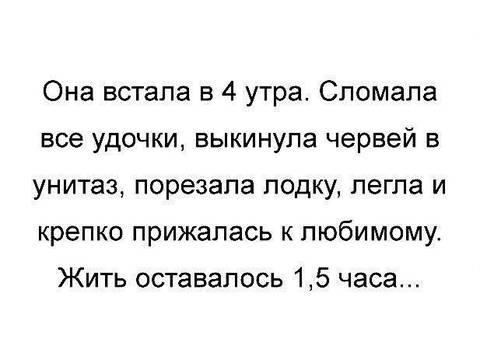 http://s3.uploads.ru/t/tXoGK.jpg