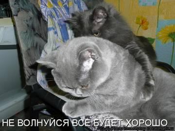 http://s3.uploads.ru/t/tadRu.jpg