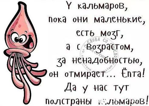 http://s3.uploads.ru/t/u3LBN.jpg