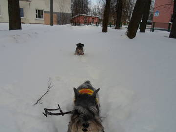 http://s3.uploads.ru/t/uEDvA.jpg