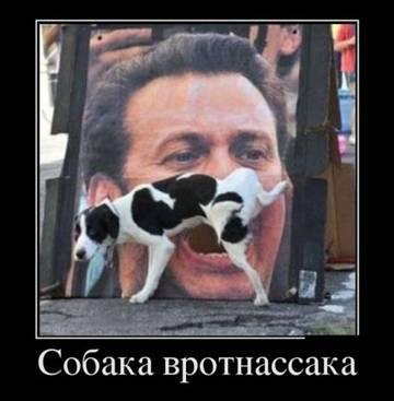 http://s3.uploads.ru/t/uSK9g.jpg