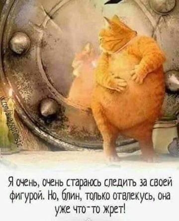 http://s3.uploads.ru/t/uTa2r.jpg