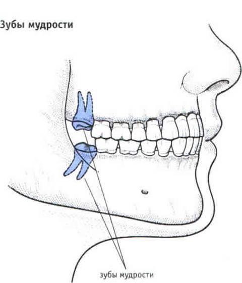 http://s3.uploads.ru/t/ujLfH.jpg