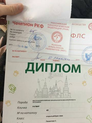 http://s3.uploads.ru/t/umcTY.jpg