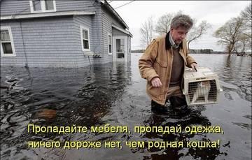 http://s3.uploads.ru/t/v5rL8.jpg