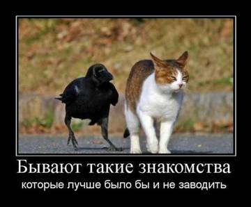 http://s3.uploads.ru/t/vBzMA.jpg