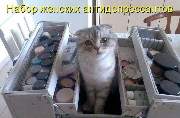 http://s3.uploads.ru/t/vEoBM.jpg