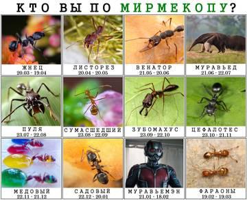 http://s3.uploads.ru/t/vEqWb.jpg