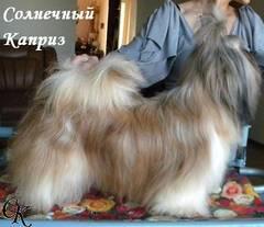 http://s3.uploads.ru/t/vGDru.jpg