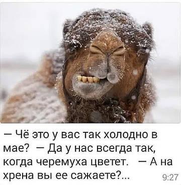 http://s3.uploads.ru/t/vN9zf.jpg