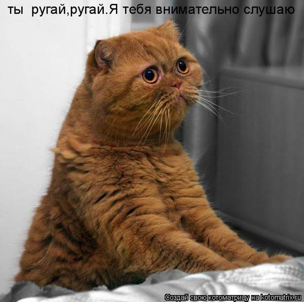 http://s3.uploads.ru/t/vajet.jpg