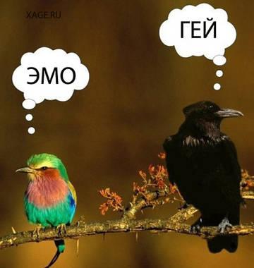http://s3.uploads.ru/t/vcXal.jpg