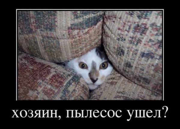 http://s3.uploads.ru/t/vlOCs.jpg