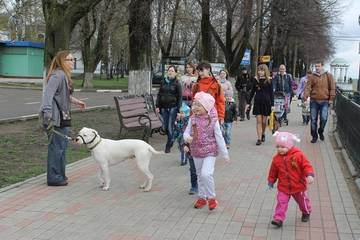 http://s3.uploads.ru/t/vsewr.jpg