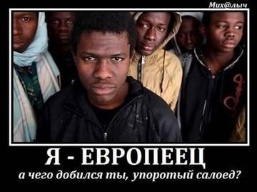 http://s3.uploads.ru/t/w4cPO.jpg