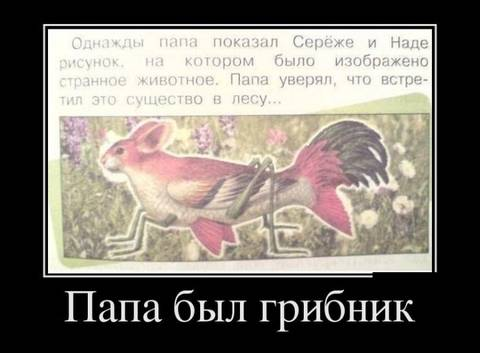 http://s3.uploads.ru/t/w7t12.jpg