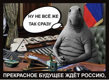 http://s3.uploads.ru/t/wALzK.jpg