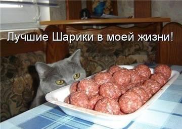 http://s3.uploads.ru/t/wNTmt.jpg