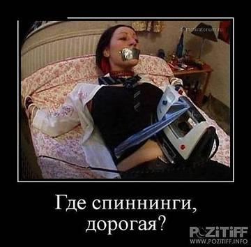 http://s3.uploads.ru/t/wQjif.jpg