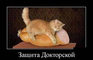 http://s3.uploads.ru/t/wYtZN.jpg