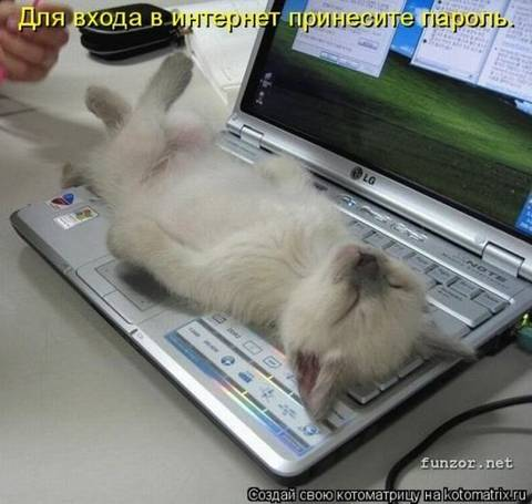 http://s3.uploads.ru/t/wgdC8.jpg