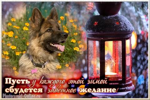 http://s3.uploads.ru/t/xKJ7b.jpg